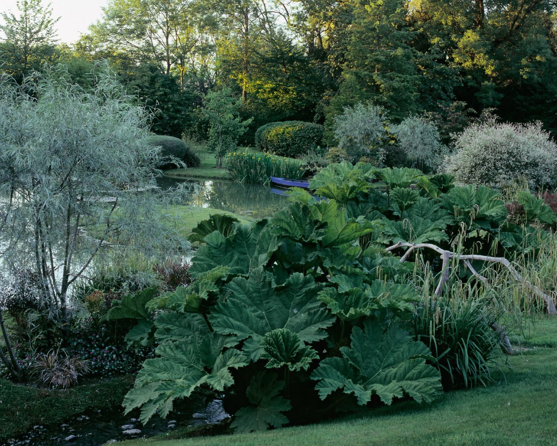 Jardin d o jardin camille muller paysagiste for Jardin o jardin