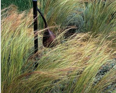 Index of /wp-content/uploads/eco-jardin-mineral
