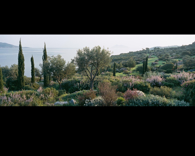 L le d ulysse jardin camille muller paysagiste for Jardin d ulysse