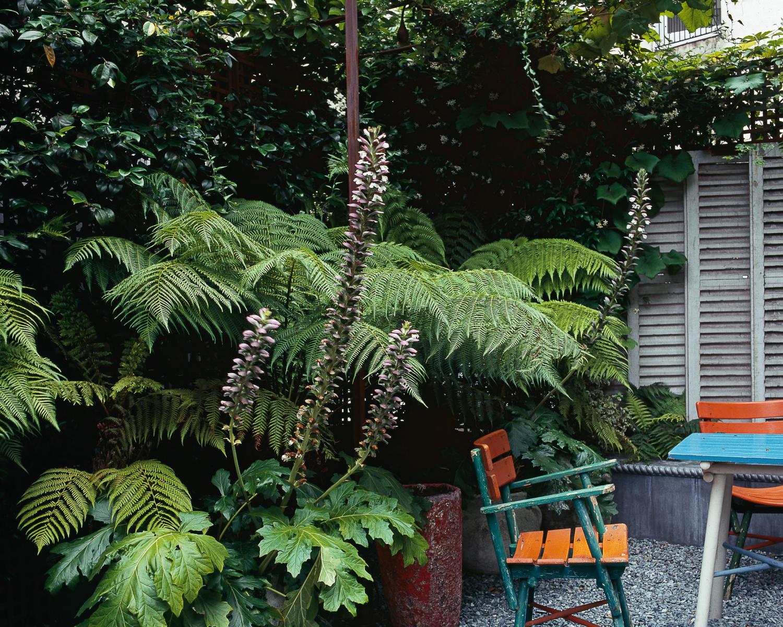 Terrasse Romantique Rome : Terrasse romantique Jardin Camille Muller paysagiste
